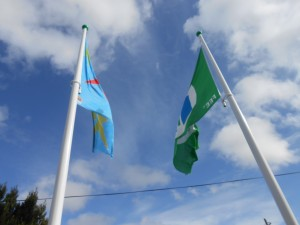 Our Active and Green Flags!